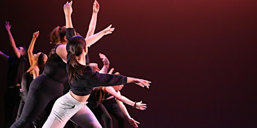 Traverse Youth Dance Platform