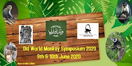Old World Monkey Symposium 2020 tickets