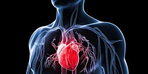 Cardiac Vascular Nursing Certification Prep Class