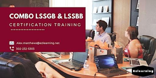 Combo Lean Six Sigma Green & Black Belt Training in Beloeil, PE