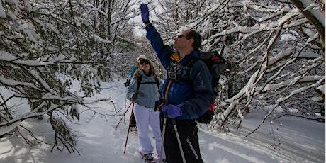 Balade en raquettes à neige Découverte du Gazon de Faîte par le lac Vert ! billets