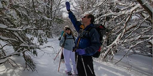 Balade en raquettes à neige Découverte du Gazon de Faîte par le lac Vert !