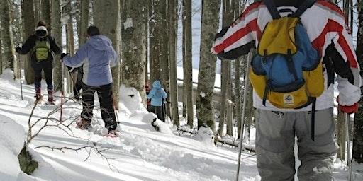 Balade en raquettes à neige sur la grande crête du Tanet !