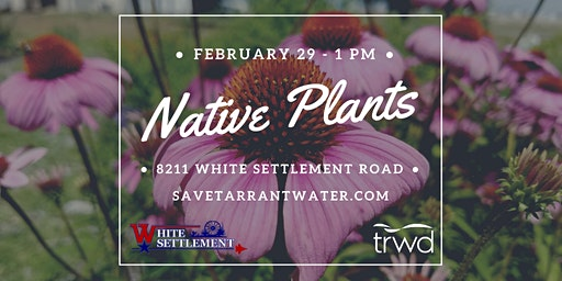 Native and Adapted Plants Class