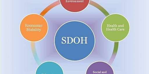 Social Determinants of Health and the Church's response
