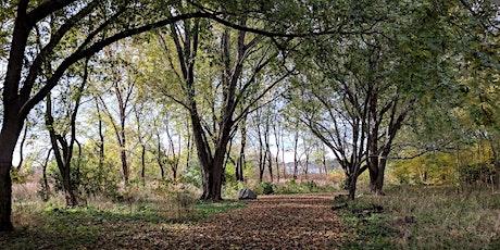 Downsview Park Jr. Forest Explorers: Pollinators tickets