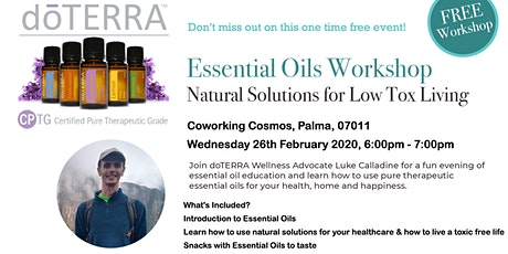 Essential Oils Workshop - Natural Solutions for Low Tox Living entradas
