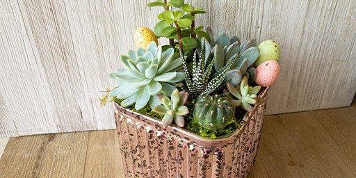 Easter-themed Succulent Centerpieces