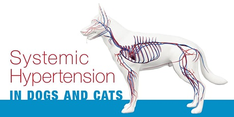 Updates on the Management of Systemic Hypertension in Dogs and Cats tickets