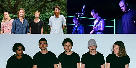 Rare Creatures, The Telescreens, Little Bird tickets