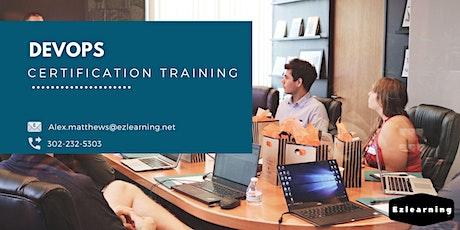 Devops Certification Training in Percé, PE billets