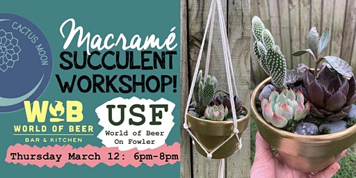USF Tampa Macrame Succulent Workshop!