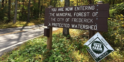 Walk in the Woods: Frederick Municipal Forest