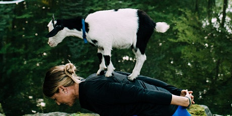 Charity Goat SNUGGLE (MSPCA at Nevins Farm) tickets