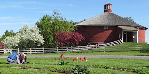 Spring Ahead & Pay It Forward: Chittenden County Volunteer Fair