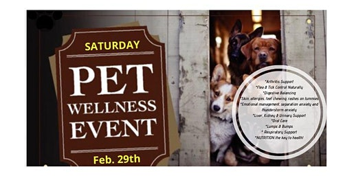 Free Wellness Workshop for your Pets!