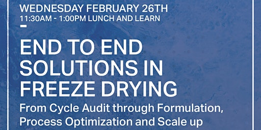 End to End Solutions in Freeze Drying:  Lyophilization Lunch and Learn