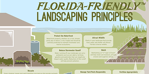 Florida Friendly Landscaping: Water, Water Everywhere & Not a Drop to Waste