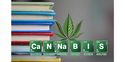 THC and Me: an Intro to Medical Marijuana