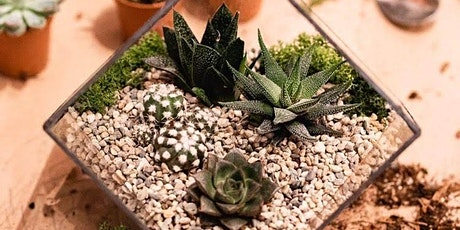 Terrarium Making Workshop tickets