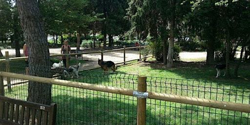 Trobada dels Amics dels Gossos de Girona amb l'Ajuntament de Girona