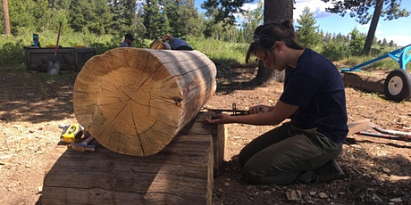 2020 Wood and Log Preservation and Repair (Grand Teton National Park) - Regular Tuition  tickets