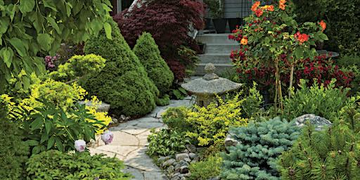 Drought Tolerant Habitat Gardens