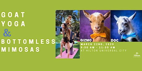 Goat Yoga with Bottomless Mimosas! tickets