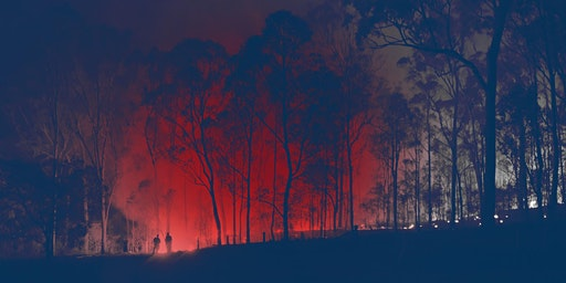 Research Tuesdays: FIRING DEBATE