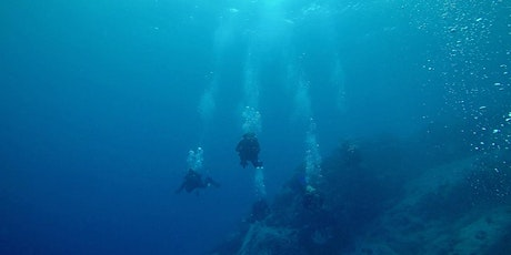 Try Scuba Diving! tickets