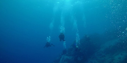 Try Scuba Diving!