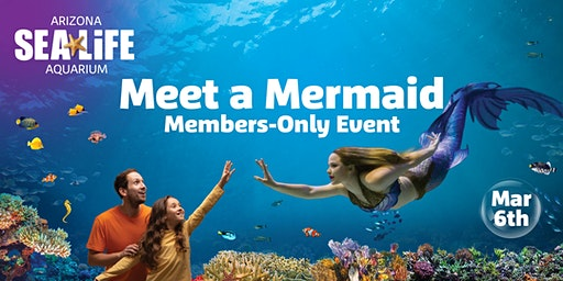 Meet a Mermaid Members-Only Event