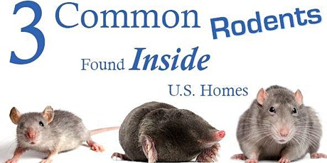 SFAA's Rodents 101 Class tickets