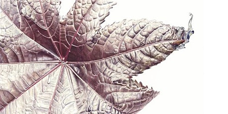 Toronto Botanical Painting workshop with Jess Shepherd (Inky Leaves) tickets