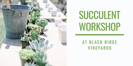 Pretty Dirty Succulent Workshop at Black Ridge Vineyards!