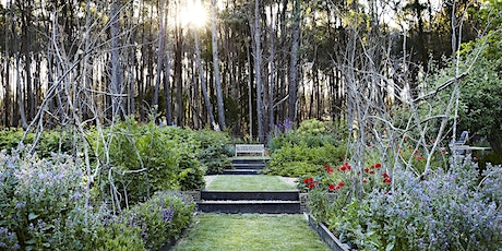 Oak & Monkey Puzzle Autumn Open Garden Day, Daylesford region, Victoria tickets