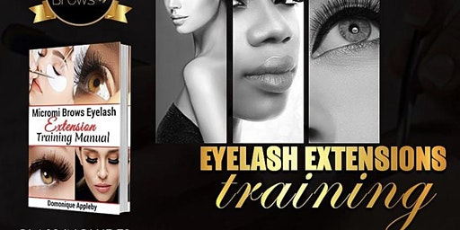 MicromiBrows mink lash training