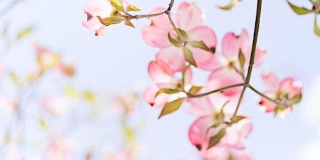 Spring Equinox Refresh & Reset - Yoga Nidra Acupuncture & Sound Healing tickets