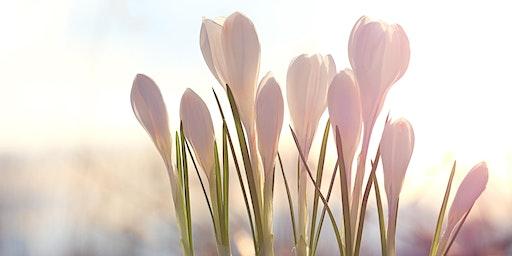 Ostara ~ Spring Equinox Ceremony