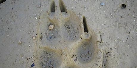 Mammal Tracks and Signs - POSTPONED tickets