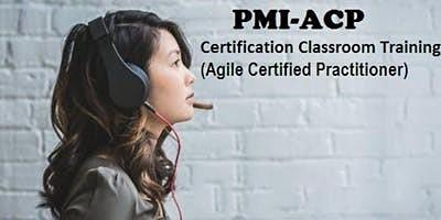PMI-ACP Classroom Certification Training in Fujairah