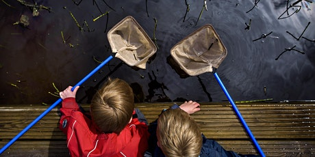 Wild Challenge Wednesday – Pond dipping at Llanishen Park tickets