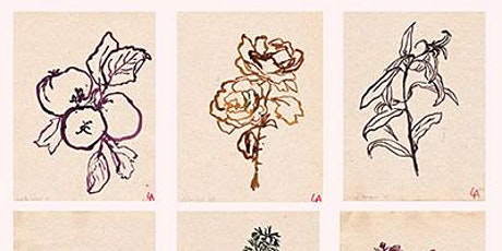 Botanical Gaul Ink Drawing with Lucy Auge tickets
