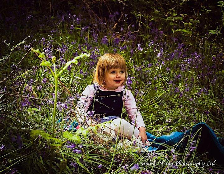 Bluebell Mini Photo Session image