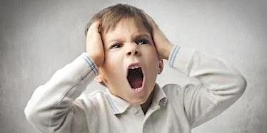 Cork BRAINCALM™ Preschools, SNAs, SETs, Parents