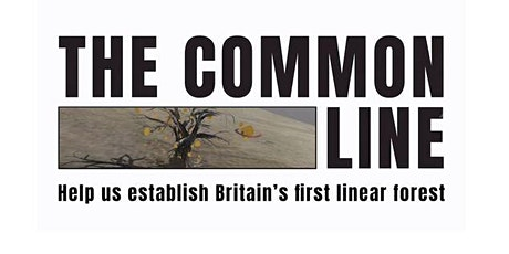 The Common Line - a 'tree scout' workshop tickets