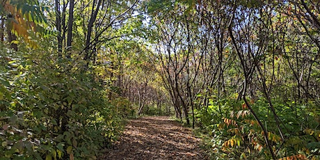 Downsview Park's A Walk in the Park: Tree-riffic Time tickets