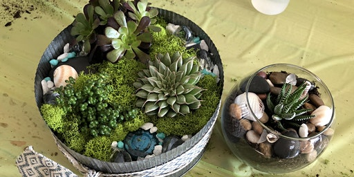Make it & Take it: Mommy & Me Succulent Gardens