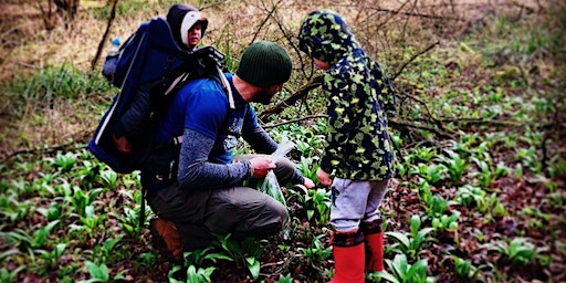 Spring Family Walk with Rob Gould, Cotswold Forager