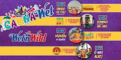CARNAWET - PARQUE WET'N WILD